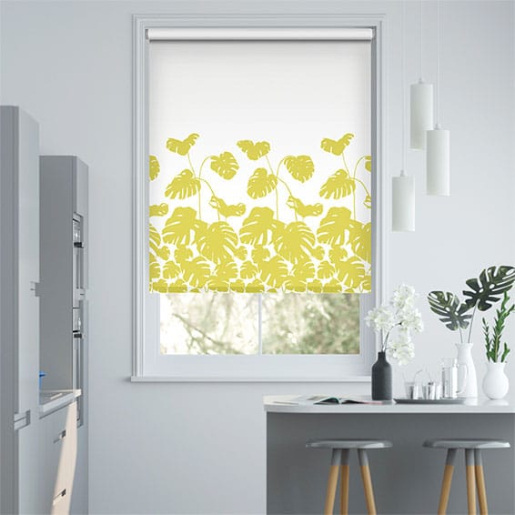 Arizona Border Citrus Roller Blind