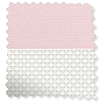 Double Roller Powder Pink swatch image