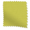 Valencia Citrus Green swatch image